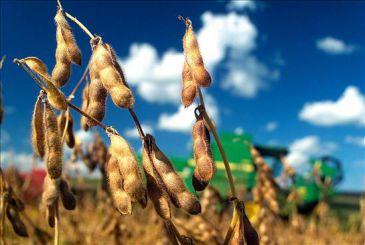 Paraguay sube estimación crecimiento 2011 a 4,5 pct